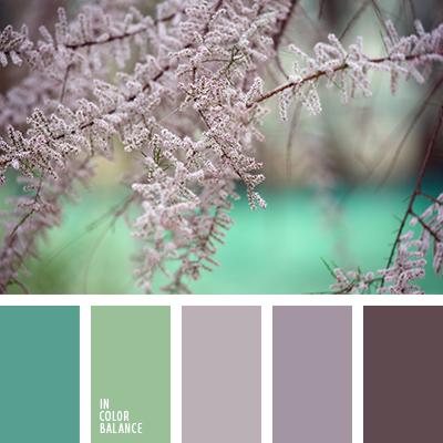 paleta-de-colores-2476