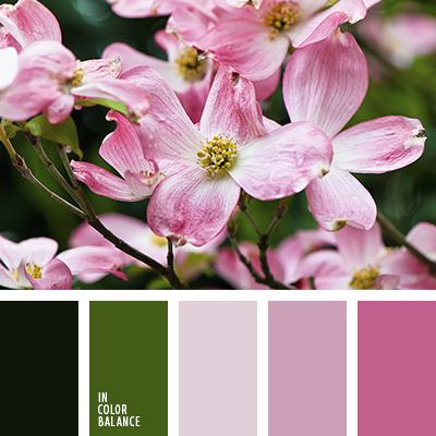 paleta-de-colores-2478
