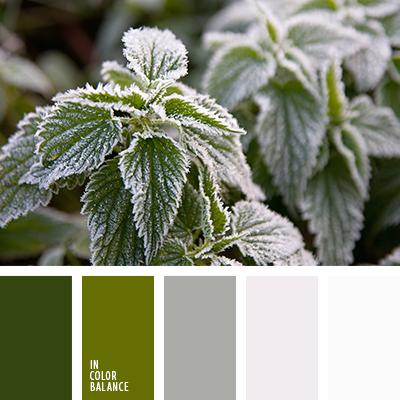 paleta-de-colores-2481