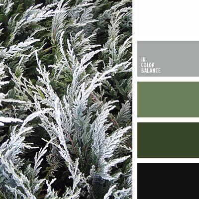 paleta-de-colores-2483