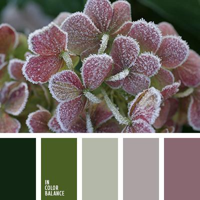 paleta-de-colores-2484