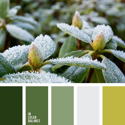 paleta-de-colores-2486