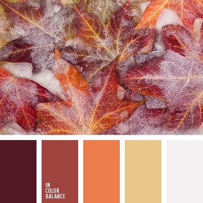paleta-de-colores-2487