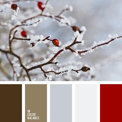 paleta-de-colores-2489