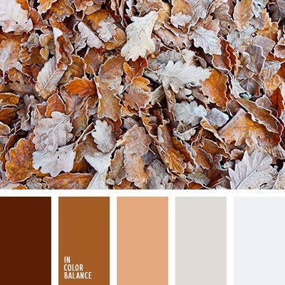 paleta-de-colores-2490