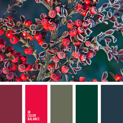 paleta-de-colores-2493