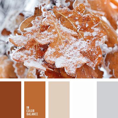 paleta-de-colores-2495