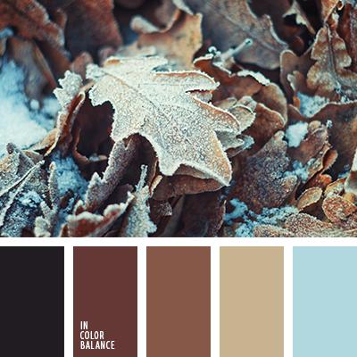 paleta-de-colores-2508