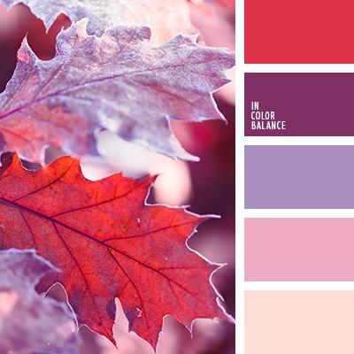paleta-de-colores-2511