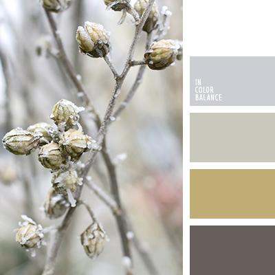 paleta-de-colores-2515