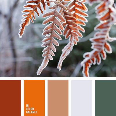 paleta-de-colores-2516
