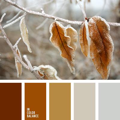 paleta-de-colores-2518