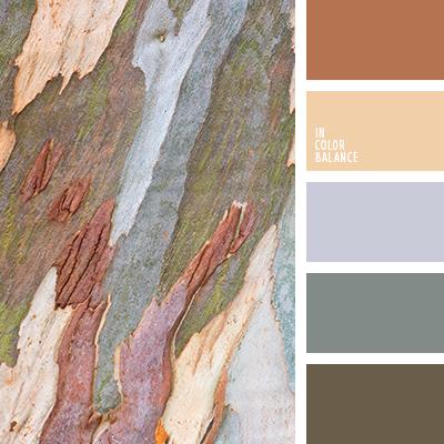 paleta-de-colores-2525