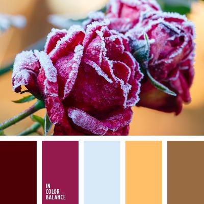 paleta-de-colores-2527