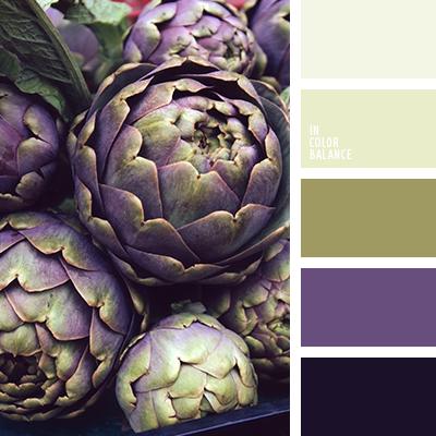 paleta-de-colores-2529