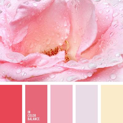 paleta-de-colores-2531