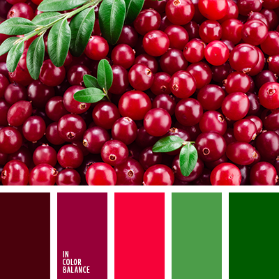 paleta-de-colores-2537