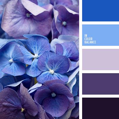 paleta-de-colores-2555