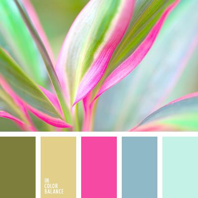 paleta-de-colores-2556