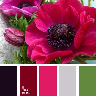 paleta-de-colores-2557