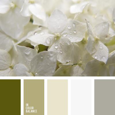paleta-de-colores-2558