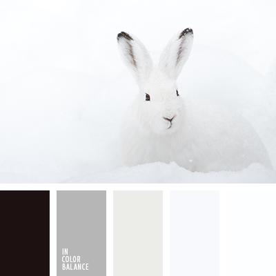 color blanco nieve | IN COLOR BALANCE