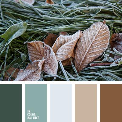 paleta-de-colores-2562