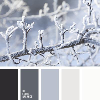 paleta-de-colores-2565
