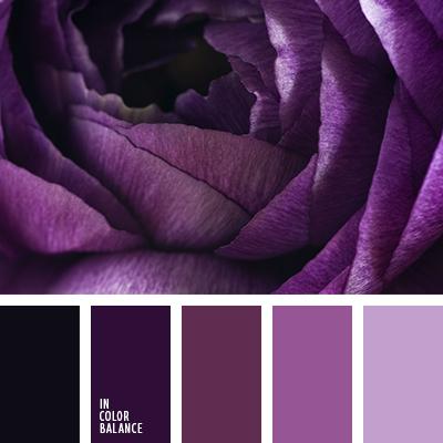 paleta-de-colores-2571