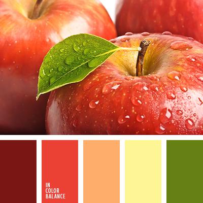 paleta-de-colores-2574