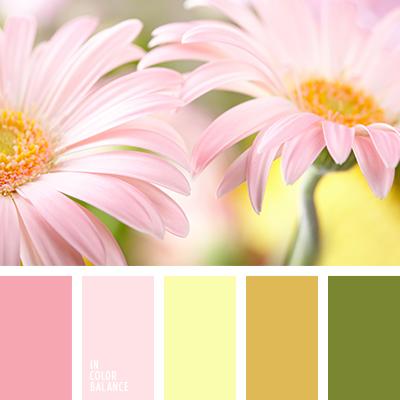 paleta-de-colores-2576