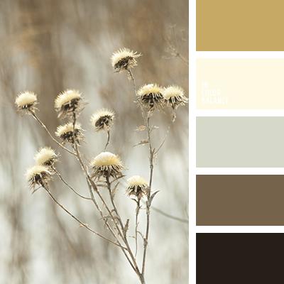 paleta-de-colores-2578