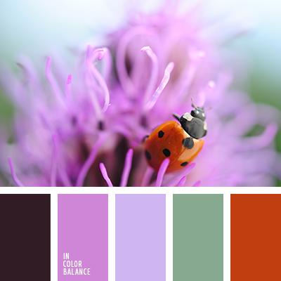 paleta-de-colores-2581