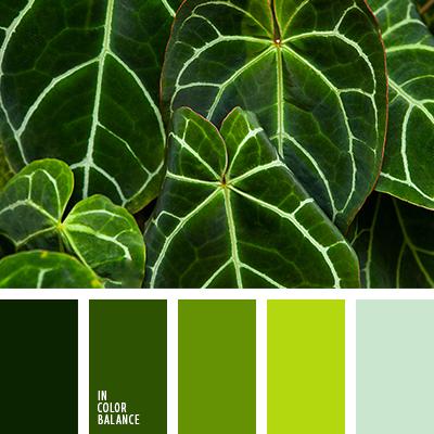 paleta-de-colores-2583