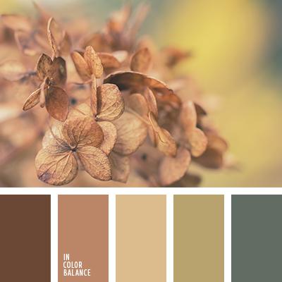 paleta-de-colores-2587