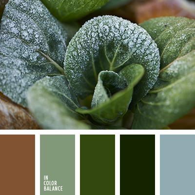 paleta-de-colores-2589