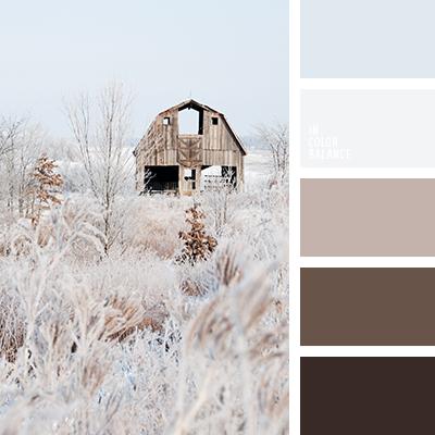 paleta-de-colores-2591