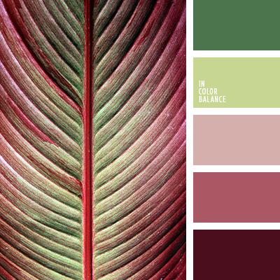paleta-de-colores-2592