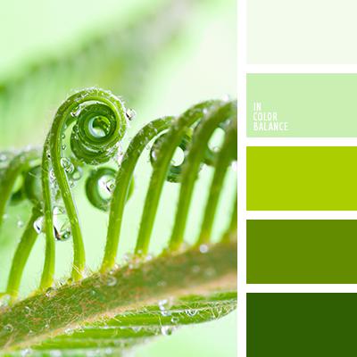 paleta-de-colores-2594