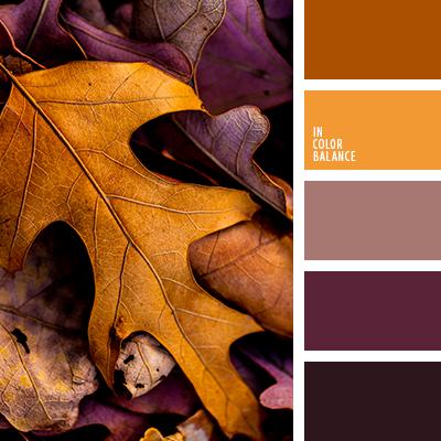 paleta-de-colores-2595