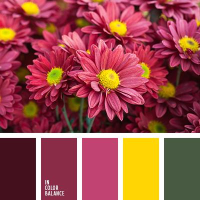 paleta-de-colores-2597