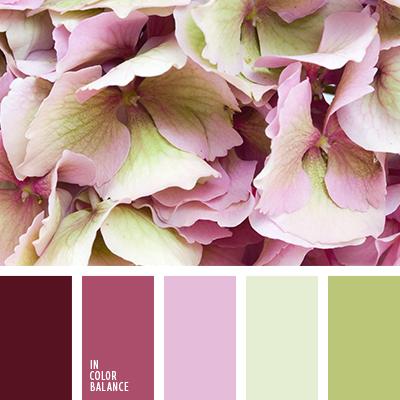 paleta-de-colores-2603