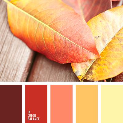 paleta-de-colores-2606
