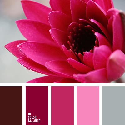 paleta-de-colores-2608