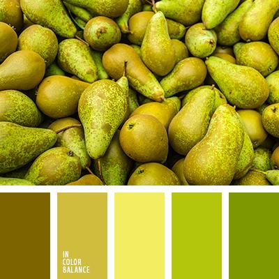 paleta-de-colores-2612