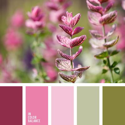 paleta-de-colores-2617