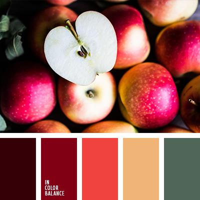 paleta-de-colores-2618