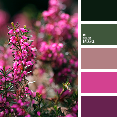 paleta-de-colores-2620