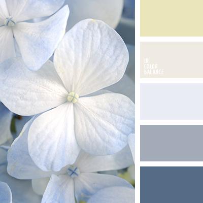 paleta-de-colores-2621