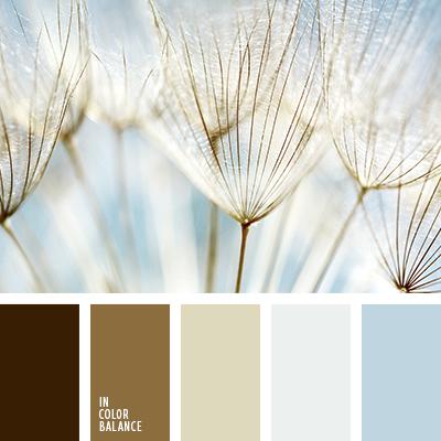 paleta-de-colores-2623